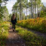 Når du går en tur – så går det nok!